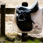20150619-inga turnier,fohlen ,pony juni 2015 012